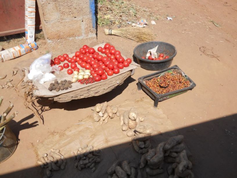 tomatoes from Africa