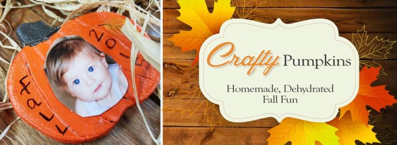 Craft Dehydrated Pumpkins