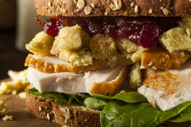 turkey sandwich, Homemade Leftover Thanksgiving Dinner Turkey Sandwich with Cranberries and Stuffing, ronco turkey, paja sanchez